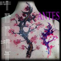 Tapado de enredadera en espalda con flores de almendro