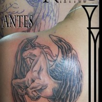 CABALLO ALADO COVER UP
