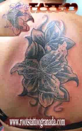 Cover up con flores y sombras