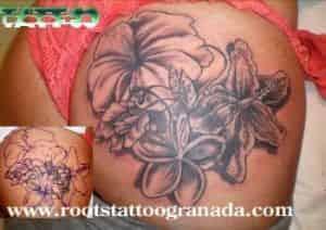 Tapado de tatuaje de gato Isidoro