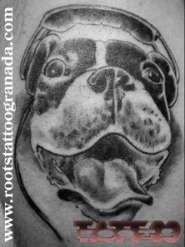 Caricatura perro tatuado