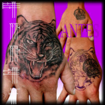 Tiger Tattoo in hand