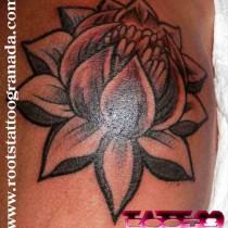 tatuaje flor de loto hombro chica